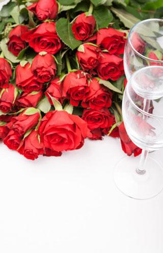 celebration-roses